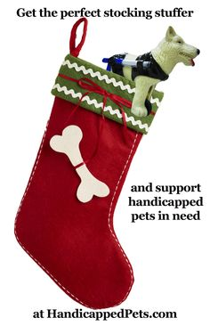 Dog wheelchair wind up toy - get the perfect stocking stuffer and support handicapped pets in need! http://www.handicappedpets.com/walkin-wheels-dog-wind-up-toy.html
