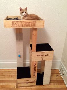 DIY Cat Tree with Wine Crate Here's an eco-friendly use for old wine crates. Your cat will be so happy too! tables diy easy 40 Cool DIY Cat Tree Kitty Condos or Cat Climbers Cat Climber, Diy Cat Tree, Cat Trees Diy Easy, Cat Towers, Cat Scratcher, Pet Furniture, Furniture Online, Furniture Ideas, Simple Furniture