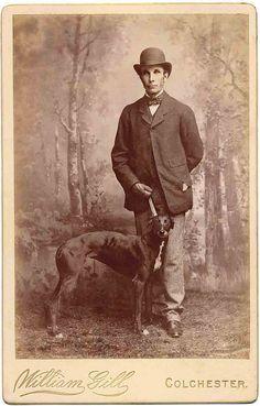 Greyhound by Libby Hall Dog Photo, via Flickr