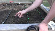 Installing a Drip System for Raised Beds, via YouTube.