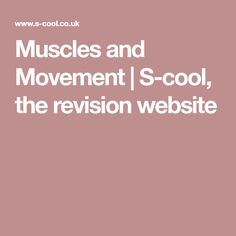 Muscles and Movement | S-cool, the revision website