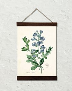 Antique French Blue Botanical No. 20 - Canvas Wall Hanging