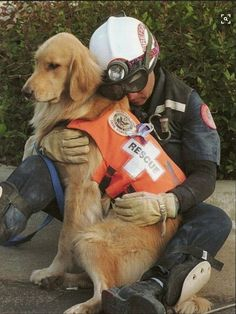El humano rescatista y el perro rescatista se aman ...