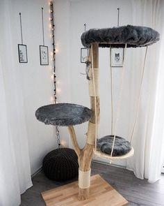Diy Cat Tower, Animal Room, Cat Room, Outdoor Cats, Cat Accessories, Cat Tree, Cat Furniture, Diy Stuffed Animals, Crazy Cats