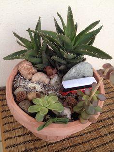 Ωρα για δημιουργία!!! Μικροσκοπικός κήπος με παχυφυτα...... Succulent plants - creation - art - gardening...