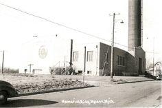 Mason MI - 1930 - Memorial Building