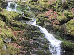The Birks of Aberfeldy Honeymoon In Scotland, Robert Burns, Close My Eyes, Waterfall, To Go, Outdoor, Outdoors, Waterfalls, Outdoor Games