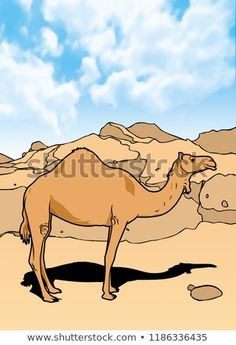 Camel Mammals Animal Illustration with smooth graphics and full coloring. So that the illustration of this Camel animals will be interesting when used as an image of supporting material, or to be seen. Camel Animal, Mammals, Royalty Free Stock Photos, Coloring, Smooth, Graphics, Illustration, Pictures, Image