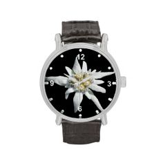 >>>Order          	Elegant White Edelweiss Watch           	Elegant White Edelweiss Watch This site is will advise you where to buyReview          	Elegant White Edelweiss Watch please follow the link to see fully reviews...Cleck Hot Deals >>> http://www.zazzle.com/elegant_white_edelweiss_watch-256396181625564371?rf=238627982471231924&zbar=1&tc=terrest