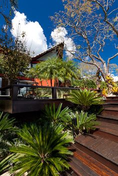Paisagismo emoldurando deck e escada em bela casa de campo!