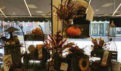 Fall Front Window-Watertown Autumn Displays, Front Windows, Pumpkin Carving, Fall, Autumn, Fall Season, Pumpkin Carvings