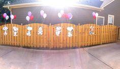 Steven's first Birthday / Snoopy Birthday Party