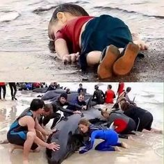 Shame On Arab Rulers they are busy in building Skyscrapers and  shame on humanity, we do everything thing for publicity. ➖ ➖ ➖ ➖ ➖ ➖ ➖ ➖ ➖  For the drowned 3years old #Syrian  little boy Aylan Kurdi.  ➖➖➖➖➖➖➖➖➖➖➖➖➖➖➖➖ #islam #life #muslim #beautiful #muslimah #spiritual #kids #usa #uk #hijab #mecca #allah #dead #pray #prophetmuhammad #quote #quran #quoteoftheday #knowledge #children #picoftheday #follow #TagsForLikes #good #faith #God #worship #love #loveit