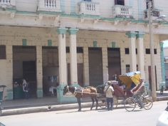 Horse and Buggy in the streets of Moron, Cuba