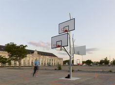 The Basketball Tree