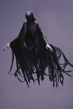 dementor by r v s photography via flickr
