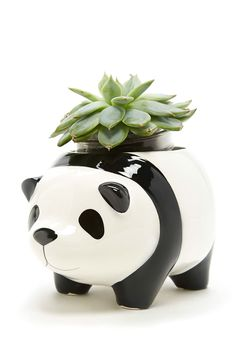 A ceramic planter pot by Streamline™ featuring a panda design with protruding ears, feet, face and tail, and an open top.