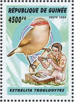 Black-rumped Waxbill stamps - mainly images - gallery format