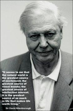 Sir David Attenborough - nobody does it better...