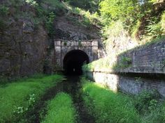 Paw Paw Tunnel: The Paw Paw Tunnel is a 3,118-foot (950 m) long canal tunnel on theChesapeake and Ohio Canal in Allegany County, Maryland