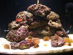 Good aquascaping for nano tank