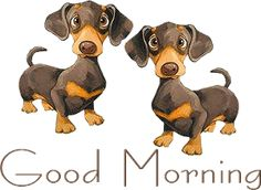 Free Animated Good Morning Messages Gifs Page Free Good Morning Texts Animations and Clipart Good Morning Dog, Good Morning Texts, Good Morning Picture, Good Morning Messages, Good Morning Greetings, Morning Pictures, Good Morning Images, Morning Quotes, Morning Coffee