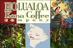 Certified organic Holualoa Kona Coffee company is for sale. 76 acres of heavenly Holualoa!