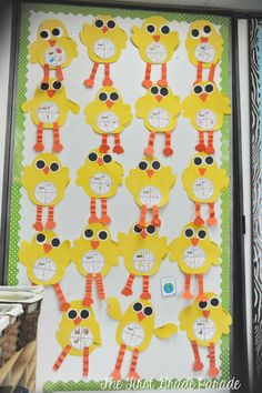 Chicken Life Cycle: The First Grade Parade
