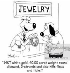 38 Best Just for fun... (Jewelry themed Images) images