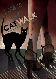 Life is a cat walk