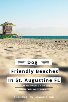 We drove through St. Augustine during our Florida road trip in the winter time. Learn if St. Augustine is vanlife friendly, the best free overnight parking spots by the beach, and dog-friendly beaches to visit. Visit Florida, Florida Travel, Florida Beaches, Saint Augustine Beach, The Wild Geese, Stealth Camping, Us Road Trip, Beautiful Ocean, Beach Town