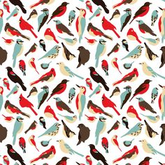 backyard birds fabric by einekleinedesignstudio on Spoonflower
