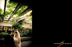 bride and groom under the trellis at the graham visitor center at the washington park arboretum by seattle wedding photographer cory parris