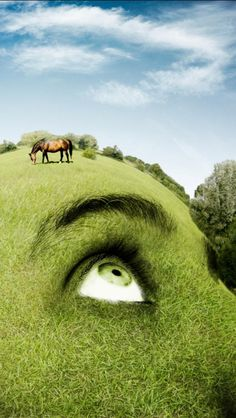 ♂ Dream ✚ Imagination ✚ Surrealism Surreal art Nature, Face, Creative, grass head hill