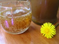 A Life Unprocessed: Lacto-Fermented Dandelion Soda. This uses a ginger bug. Kimchi, Dandelion Recipes, Ginger Bug, Probiotic Drinks, Fermentation Recipes, Wild Edibles, Fermented Foods, Kombucha, Healthy Drinks