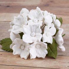 Bell Flowers | CaljavaOnline