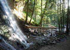 Зигзагообразный водопад Bridal Veil в лесном массиве Франции