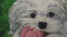 how to paint a white dog in acrylic - YouTube