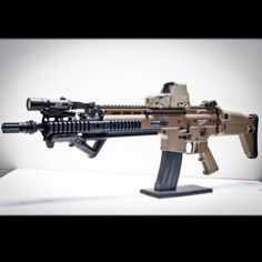 Optical sight and laser (or what? Assault Weapon, Assault Rifle, Zombie Guns, Ammo Storage, Battle Rifle, Fire Powers, Home Defense, Military Guns, Firearms