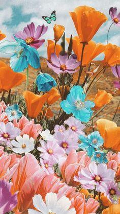 Flor Iphone Wallpaper, Summer Wallpaper, Iphone Background Wallpaper, Aesthetic Iphone Wallpaper, Flower Wallpaper, Nature Wallpaper, Aesthetic Wallpapers, Aesthetic Backgrounds, Beautiful Wallpaper