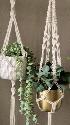 Macrame Plant Hanger Patterns, Macrame Plant Holder, Macrame Patterns, Plant Holders Diy, Diy Hanging Planter Macrame, Macrame Design, Macrame Art, Macrame Projects, Hanging Plants