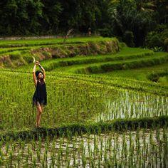 458 отметок «Нравится», 5 комментариев — Photographer SAVINOVA VIKA (@savinova_viktoria) в Instagram: «Рисовые плантации...#йога #summer #бали #bali #массажнабали #relax #indonesia #instagramrussia…»