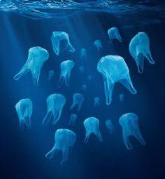 Les sacs en plastique à usage unique seront bientôt interdits. Ils devaient être bannis au premier janvier mais c'est un peu tôt, semble-t-il. Trois mois de plus leur sont accordés. Leur...