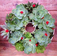 Blog da Roca Imóveis: Faça você mesmo: guirlanda de Natal com plantas suculentas