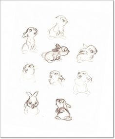 "Thumper Concept Sketches From ""Walt Disney's Bambi: The Sketchbooks Series"" Animal Sketches, Animal Drawings, Drawing Sketches, Art Drawings, Panpan Bambi, Bambi Art, Disney Sketches, Disney Drawings, Disney Love"