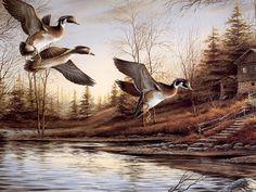 Backwoods Cabin-Wood Ducks by Terry Redlin Wildlife Paintings, Wildlife Art, Terry Redlin, Most Popular Artists, Hunting Art, Duck Hunting, Nostalgic Art, Artist Pencils, Outdoor Art