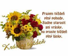 Happy Sunday, Night, Quotes, Quotations, Quote, Shut Up Quotes