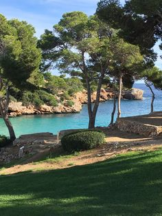 Cala Esmeralda beach among the pine trees. www.inturotel.com Hotels where you truly feel the mediterranean essence. Cala d'Or - Mallorca