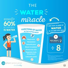 Infographic about the importance of water to the human body. It notes the different benefits of drinking the optimum amount of water per day Importance Of Water, Bodily Functions, Body Composition, Human Services, Water Supply, Physiology, Our Body, Body Weight