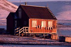 Bildergebnis für inuit today